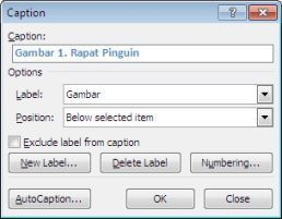 kotak dialog Caption